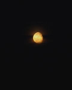 moongold1